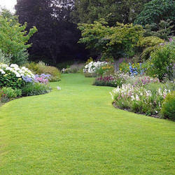 Horticulture Gardening Service, Lawns And Green Houses