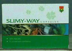 Ayurvedic Green Slimy Way, Packaging Type: Box
