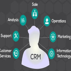 Custom CRM Web Development Service