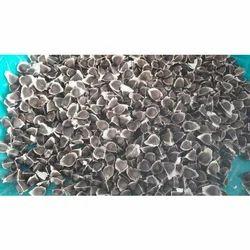 Organic Moringa Oil Seeds