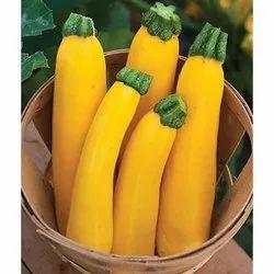 Yellow Zucchini, Packaging Type: Carton, Packaging Size: 20 Kg