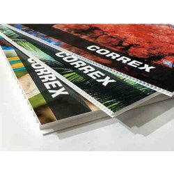 Correx Sheet