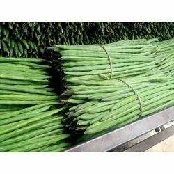 A Grade Green Fresh Drumstick Vegetable, 5 Kg