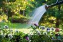 Garden AMC Service