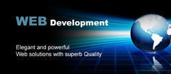 Website Navigation Development Service