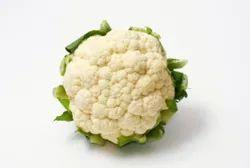 Cauliflower Fedo