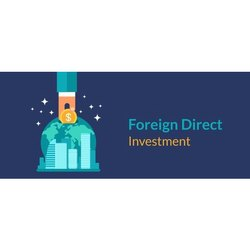 Foreign Direct Investment Consultant