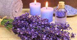 Pure Lavender Oil