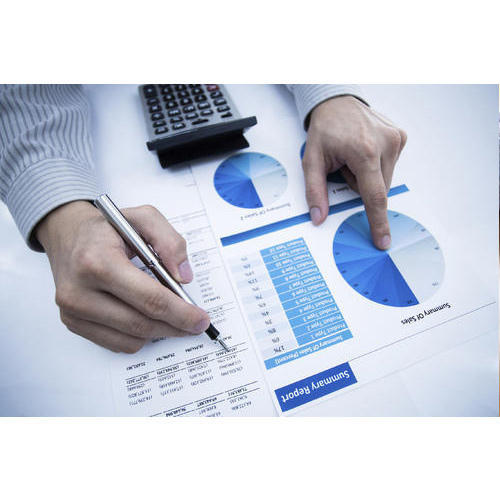 Financial Report Analysis Service