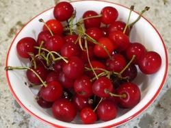 Sour Cherry Flavour