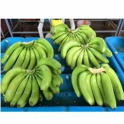 G9 A Grade Raw Banana, Packaging Type: Carton