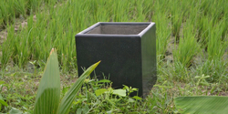 Black Square Plain Flower Pot