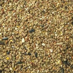 Broiler Quail Grower Feed