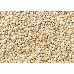White Quinoa Grain
