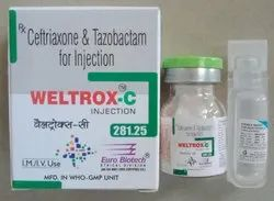 Ceftriaxone  & Tazobactam Injection Combinations