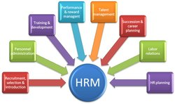 Part Time Education Human Resource Strategic Tools