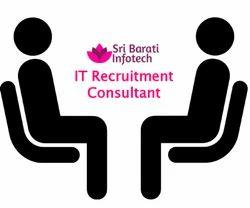 IT Recruitment Consulting