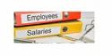 5 Years Salary Processing Payroll Services In Ranchi