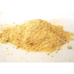 Spray Dried Garlic Powder