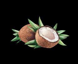 Olifera White Coconut Juice Powder Pre-Mix Natural