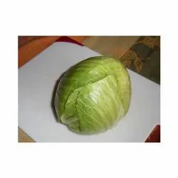 Maharashtra Green Organic Cabbage, Pesticide Free (for Raw Products), Packaging Size: 25, 50Kg