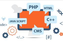 PHP/JavaScript Dynamic Microsite Development Service, With 24*7 Support