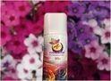 Bliss Room Freshener