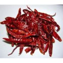 Without Stem Indian Dry Red Chilli