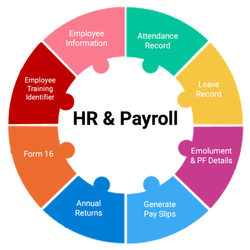 Online And Offline Salary Processing Payroll Management Service, in Pan India