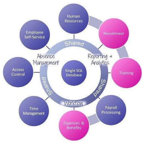 HRMS Payroll Software