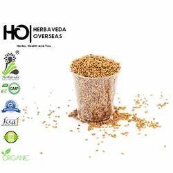 Herbaveda Alfalfa Seeds, Packaging: 1 kg