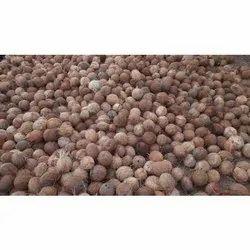 Husked Coconut, Packaging Size: 100 kg