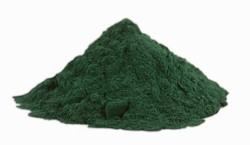 100% Pure Spirulina Powder for Clinical, Packaging Type: Pp Bags