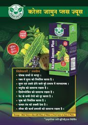 Raghav Biotech karela jamun plus juice, Pack Size: 500 ml