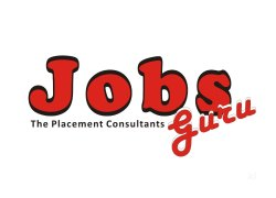 Jobs The Placement Consultants ludhiana