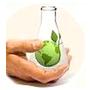 Egreen Tech