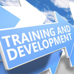 Training and Development Service