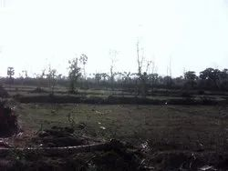 350 Acres Land For sale Rs:4,000,00/- Per Acre ,Chittoor District 100 % Clear Title