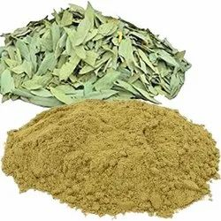 Green Nilavarai Powder, Packaging Type: Packet, Packaging Size: 25 Kg