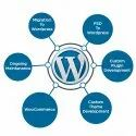 Wordpress Development Service, Local