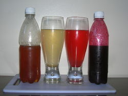 Soft Drink Concentrates
