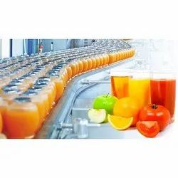 Individual Consultant 1 Month Fruit Juice Processing Consultancy Services, Pan India