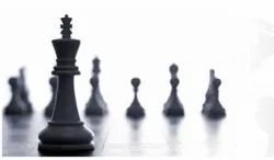 Strategy Consulting Service