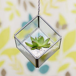 Metal Silver Hanging Glass Boxes, Size/Dimension: 6 Inches