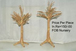 Coconut Fiber Decoration Items