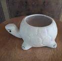 Tortoise Ceramic Pot