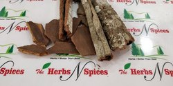 Indian Cinnamon Bark - Cinnamomum Zeylanicum - Taj
