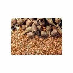 Eucalyptus Camaldulensis Seeds