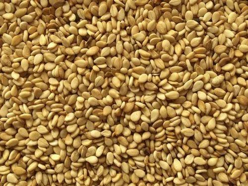 Natural Mozambique Origin Sesame Seeds Pack Size 25 Kg