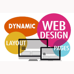 Dynamic Web Designing Services, Dynamic Website in Navi